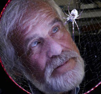 Bearded scientist staring at a spider in a web